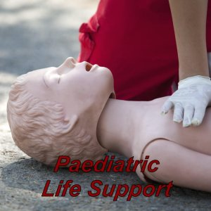 Basic Life Support Training For Childminders, Teachers